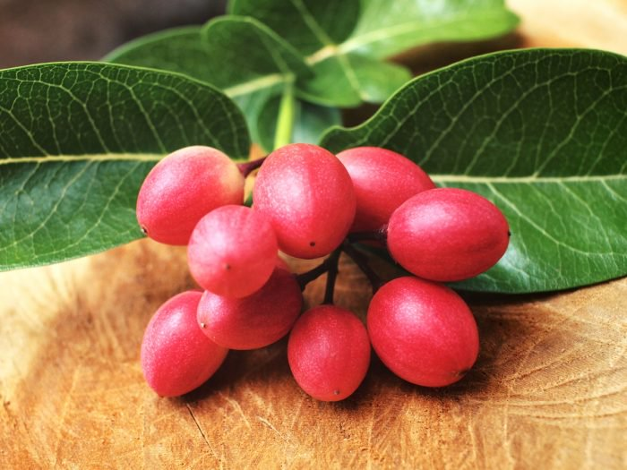 Health Advantages of 3 Miracle Fruits – Acai Berries, Goji or Wolfberry and Particularly